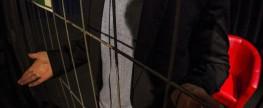 Ein Zaun im Treibhaus