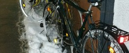 """Radln bei Schneefall in Innsbruck – der neueste Trend, oder sind die """"plemplem""""?"""