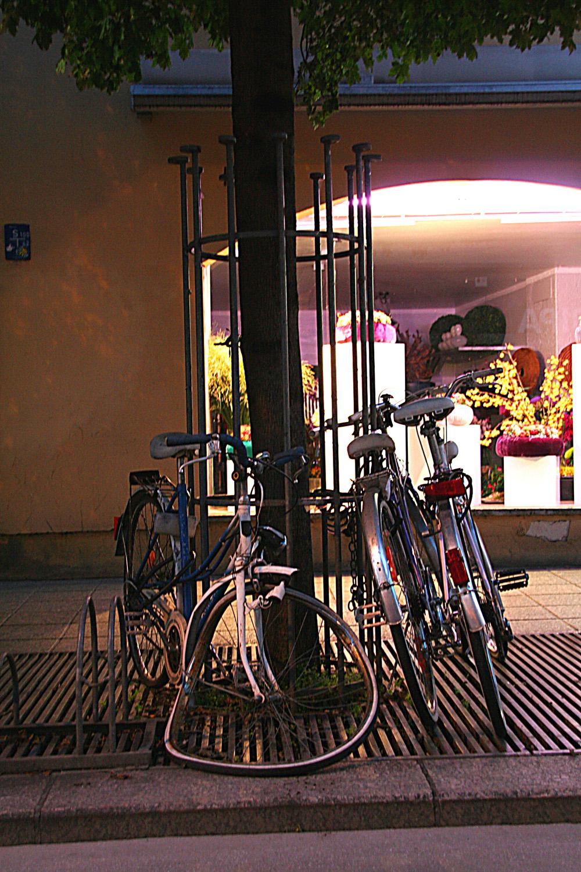 Dauerbrenner Radverbot: Bürgermeisterin bremst Grüne aus