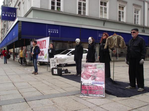 Wöchentliche Infodemos in Innsbruck: Kreativ gegen Tierpelzhandel und Repression