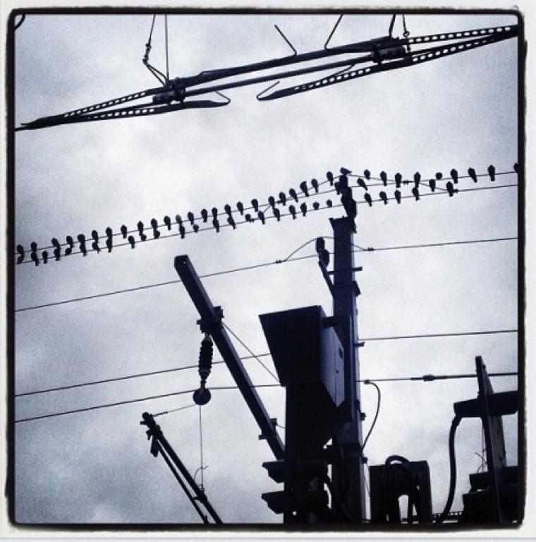 #ibktwit – ein Social-Media-Experiment für Innsbruck